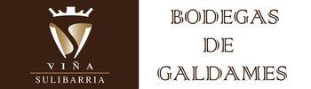 Logo Galdames - copia